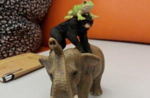 trening kreatywności w bibliotece