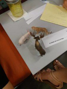 Figurki zwierząt na szkoleniu dla bibliotekarzy